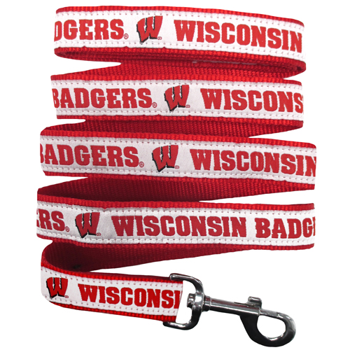Wisconsin Badgers NCAA Nylon Dog Leash