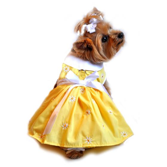 Yellow Daisy Dog Dress