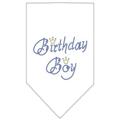 birthday boy crown rhinestone dog bandana white